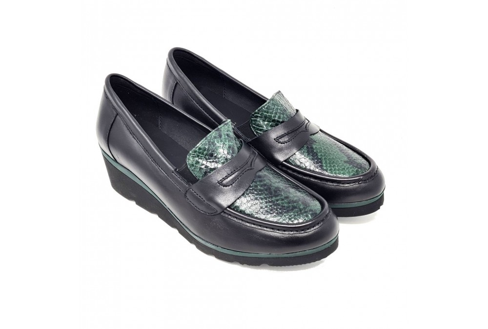 ROMA  96010 FLORIDA NEGRO SERPIENTE BOSQUE